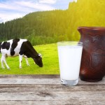 Milk-in-glass-with-cow-in-background