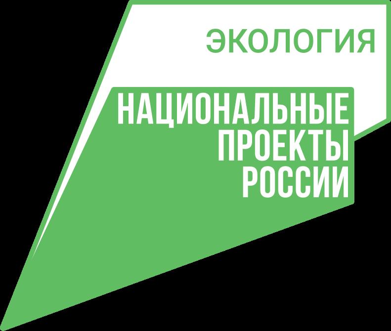 Около 300 тыс. сеянцев дуба и сосны пополнят в этом году лесной фонд Орловской области