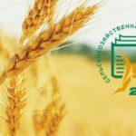 В Орловской области завершилась первая Всероссийская сельскохозяйственная микроперепись